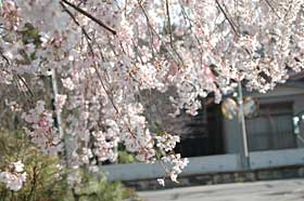 09ryukakuzi1.jpg