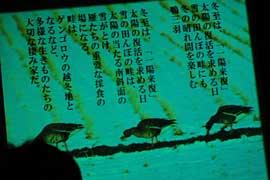 09yuuki2.jpg