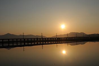 冬水田んぼの朝