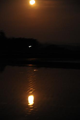 田んぼに月
