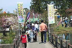ooikesakura3.jpg