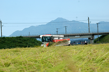 14yamadakariowari2.jpg