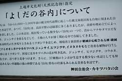 yosidayati3.jpg