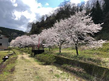 20kamiokatatazumai.jpg